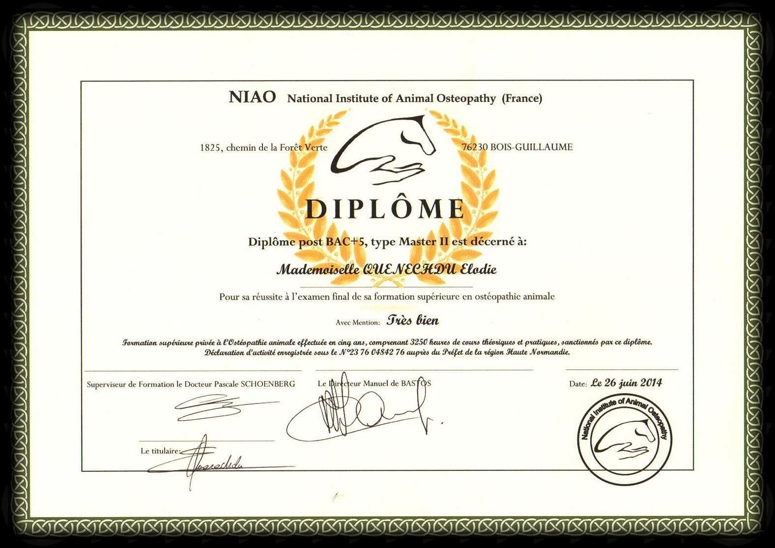 Diplome NIAO Ostéopathe Animalier